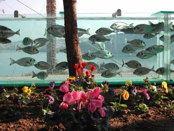 Невероятный забор-аквариум вокруг дома