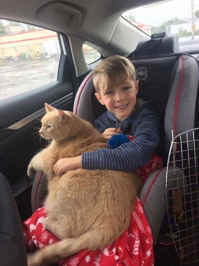 Мама разрешила сыну выбрать любое животное из приюта. Его выбор удивил не только ее.
