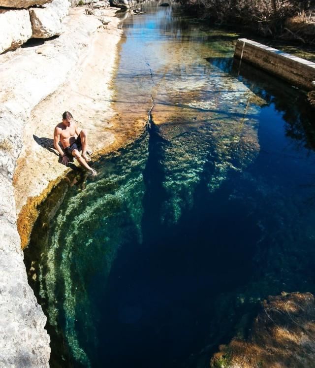 18 фото, после которых лезть в воду что-то не хочется