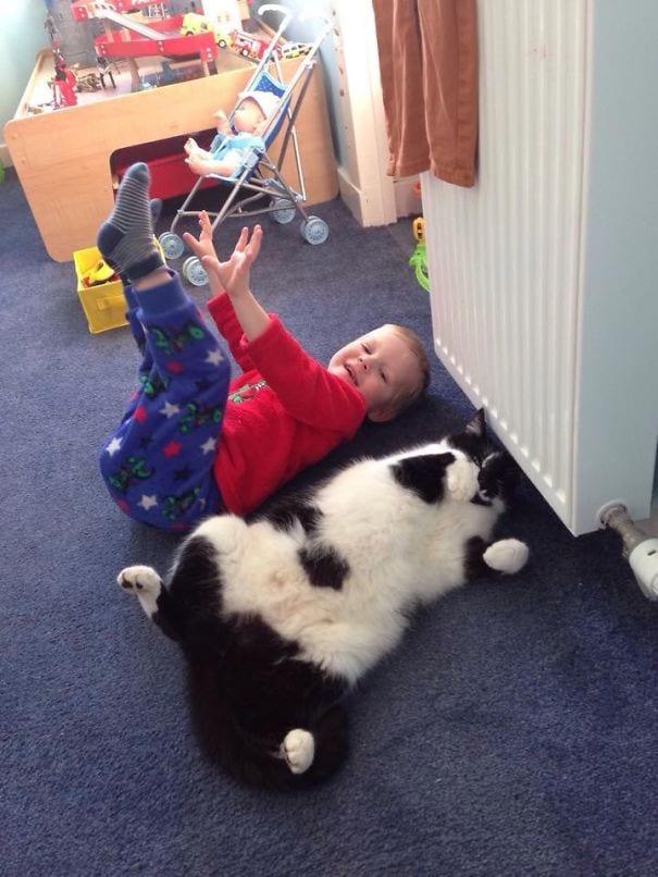 22 фотодоказательства, что детство с кошкой вдвойне счастливее