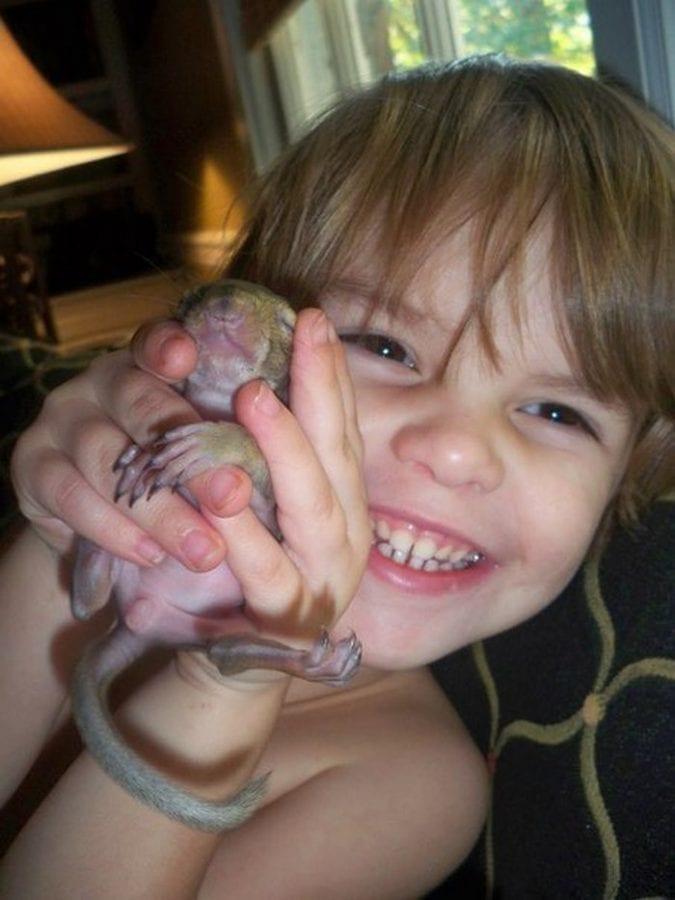 Белка 8 лет навещает семью, которая ее спасла