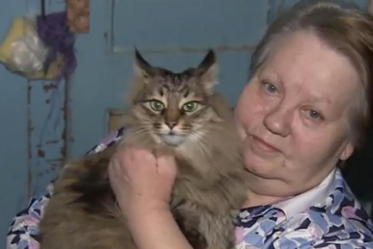 Кошка сидела в коробке в подъезде и мяукала. Она была там не одна.