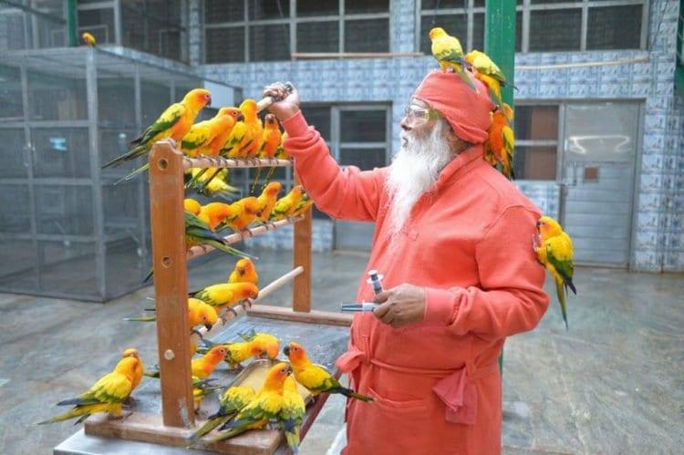 Повелитель птиц занесен в Книгу рекордов Гиннесса