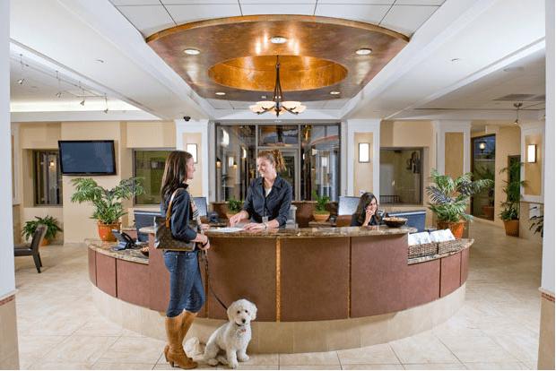 """Роскошный отель """"Barkley"""" для животных (16 ФОТО)"""