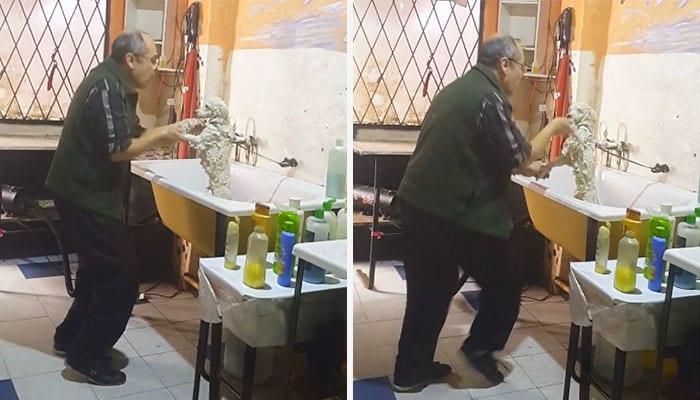 Жена грумера сняла невероятное видео о работе своего мужа