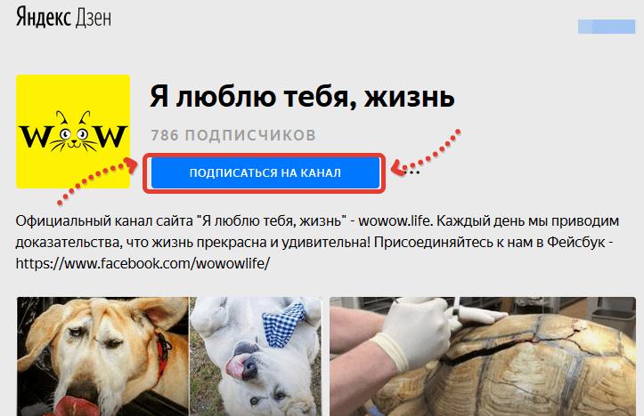 Розыгрыш для владельцев животных. Итоги 7 мая 2018.