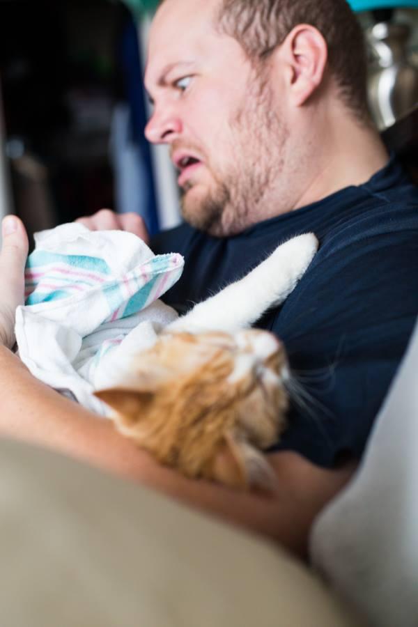 Пара выложила в Интернет фотосессию шуточных «родов» кота