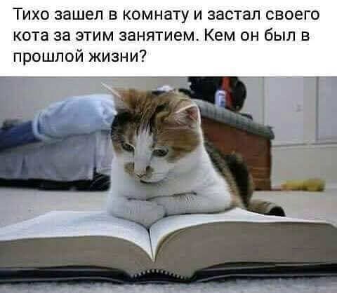 ИГРА: Кто НЕ самый умный