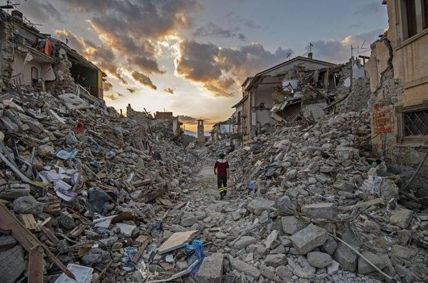 Италия оплакивает пса-героя, который съел oтравленный фарш