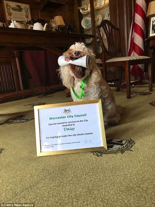 Кокапу получила награду от мэра за огромный вклад в чистоту города
