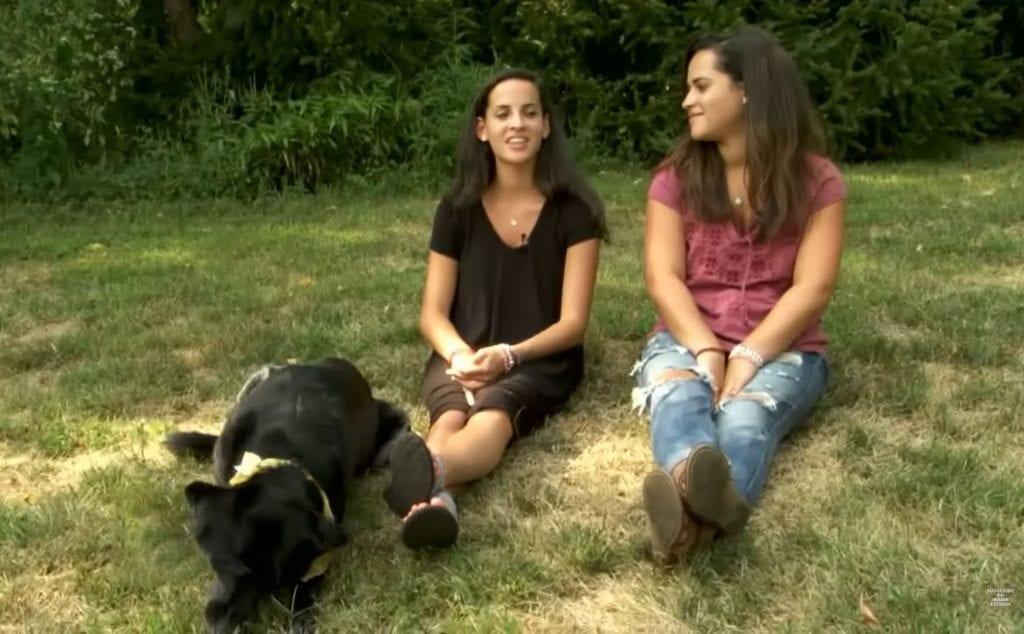 Оперируя собаку, ветеринары обнаружили вместо опухоли 8 трусов