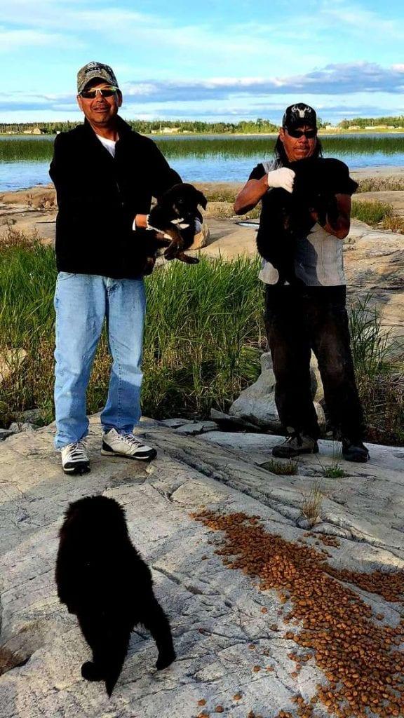Мужчины отдыхали на озере, когда с необитаемого острова раздался плач
