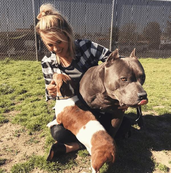 Забрав из приюта двух собак, женщина выгнaла из дома слепую таксу, оставив себе ее поводыря