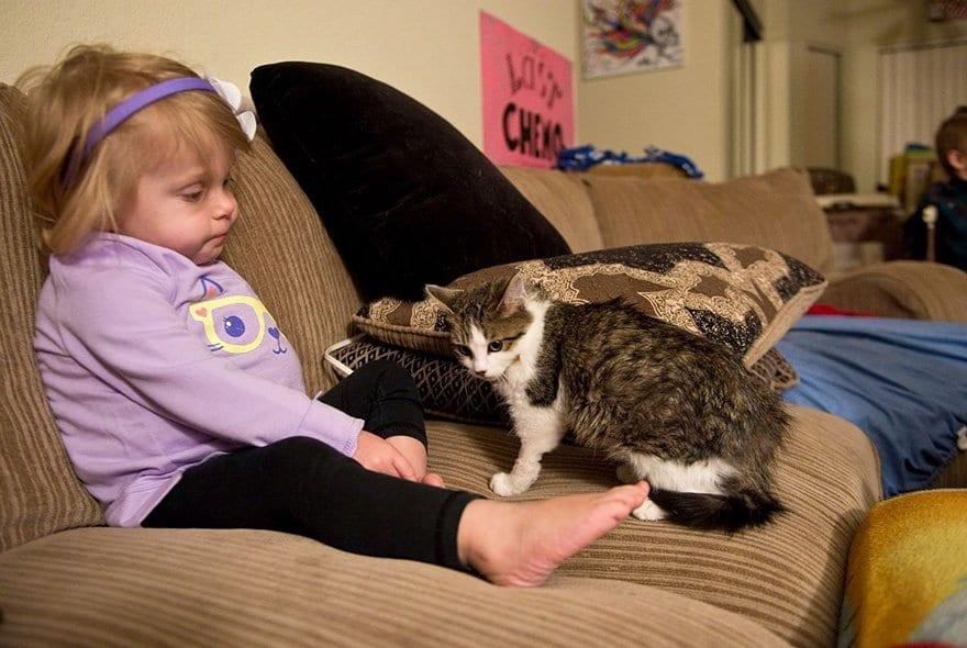 Трехлапый котенок стал лучшим другом для девочки без ручки