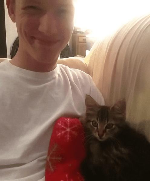 Спасенный кот решил сам спасти котенка