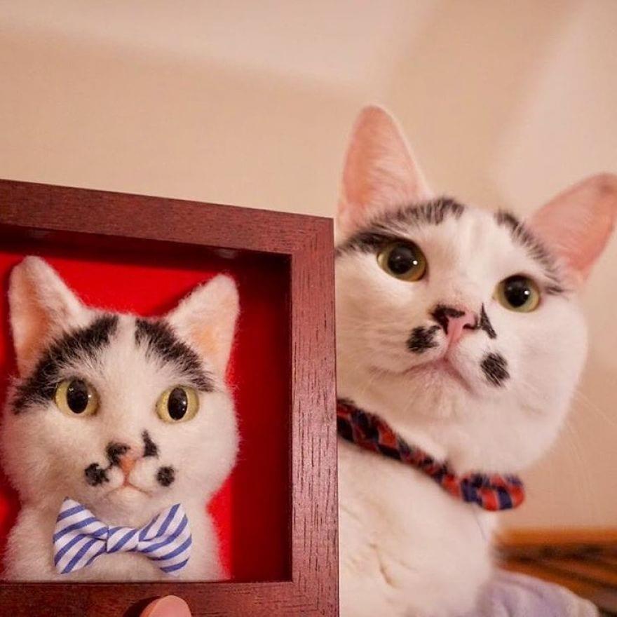Реалистичные 3d-портреты кошек из их шерсти от японского художника