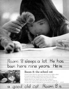Удивительная история кота, который 16 лет ежедневно ходил в школу