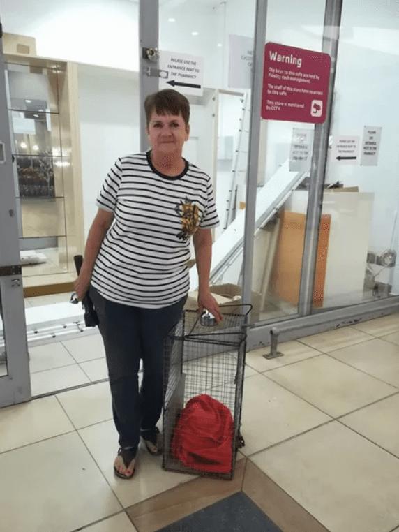 65-летняя бабушка забралась на крышу высокого магазина, чтобы спасти котенка