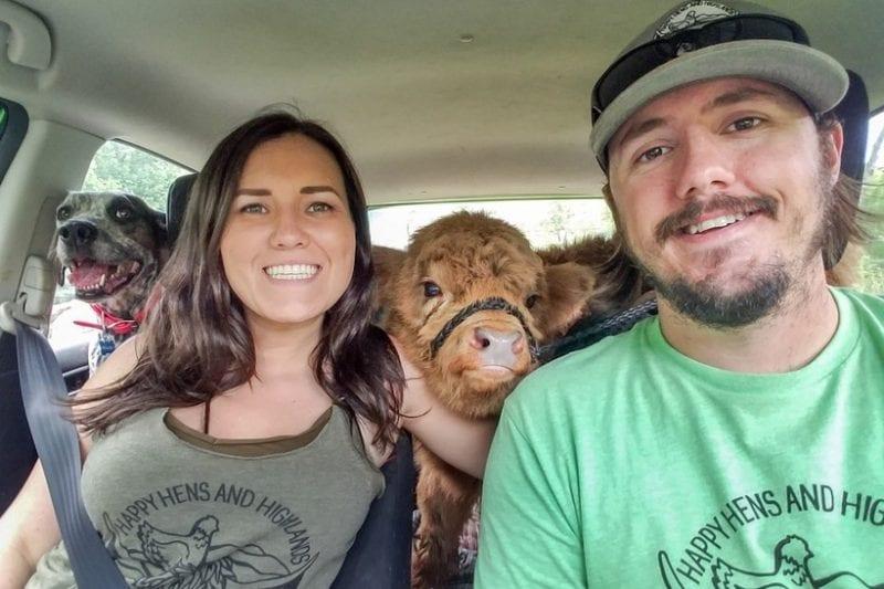 История телёнка, который думает, что он собака