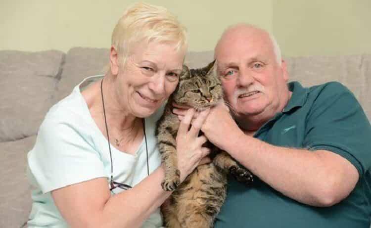 Самому самому коту в мире исполнился 31 год