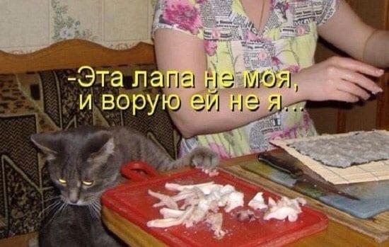 """26 фото из цикла """"Не своруешь - не поешь!"""""""