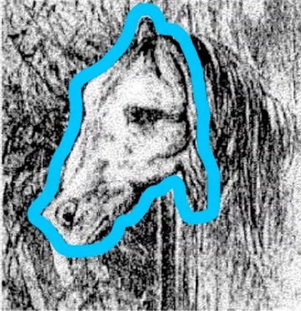 ТЕСТ: Сколько животных изображено на этом рисунке?