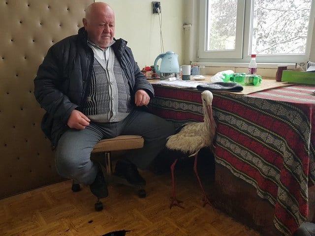 Простой работяга начал спасение аистов от мороза по всей Болгарии