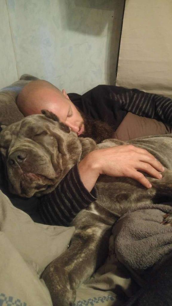 Спасенная собака так боялась людей, что переставала дышать рядом с ними