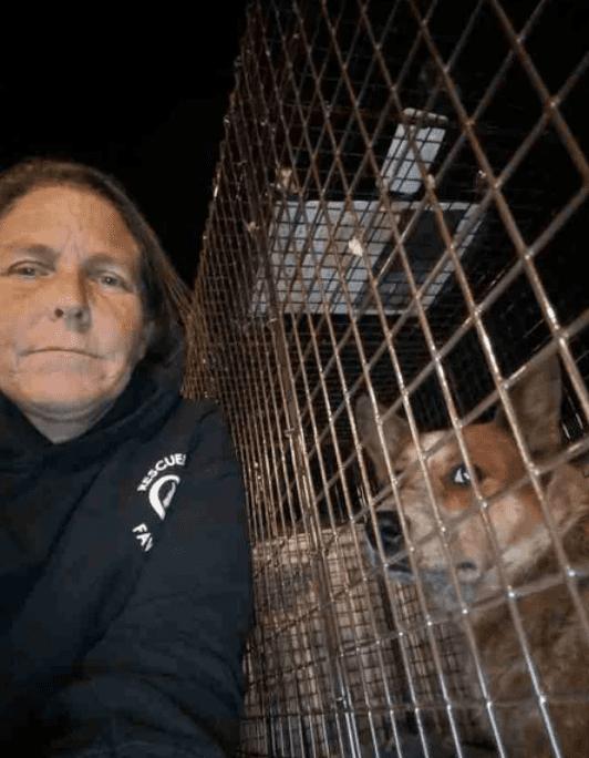 Плакал и хозяин, и собака, которая нашлась через 28 дней после пропажи