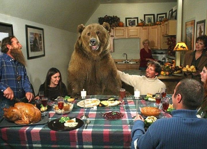 Мужчина нашел двух медвежат у мертвой медведицы и решил спасти им жизнь